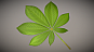Chestnut-leaf-low-poly-3d-model-download