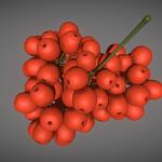 3D-Modell: Rowanberry