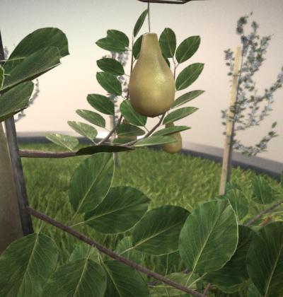 Hochdetailliertes 3D-Baum-Modell: Birnbaum im Sommer in verschiedenen Größen, mit Texturen und Materialien