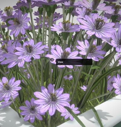 3D Modelle-Pflanzengefäße - download - kaufen