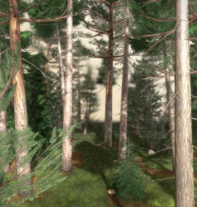 Top 10 unserer besten 3D-Baum-Modelle: Nadelwald-Kiefer-Fichten