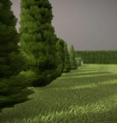 Detailliertes 3D-Baum-Modell Typ Zypresse