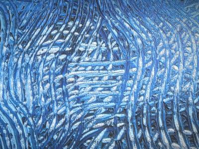Blaue Verwandlung_2 - Oil Painting - 3D Modell_Detail_2